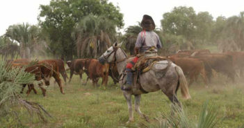 El precio de la tierra en Corrientes