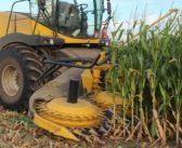 El costo del silo de maíz en perspectiva